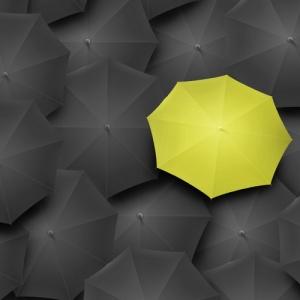 2008年于苏州成立财牛期货软件研发工作室